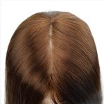 Long Hair Silk Top Lace Wig For Women