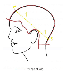 How to Make Template for Toupee and Wig