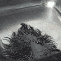 soak-the-hair-system-in-cool-water-for-a-while